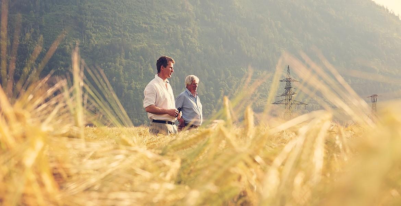 Lurnfeld Weizen
